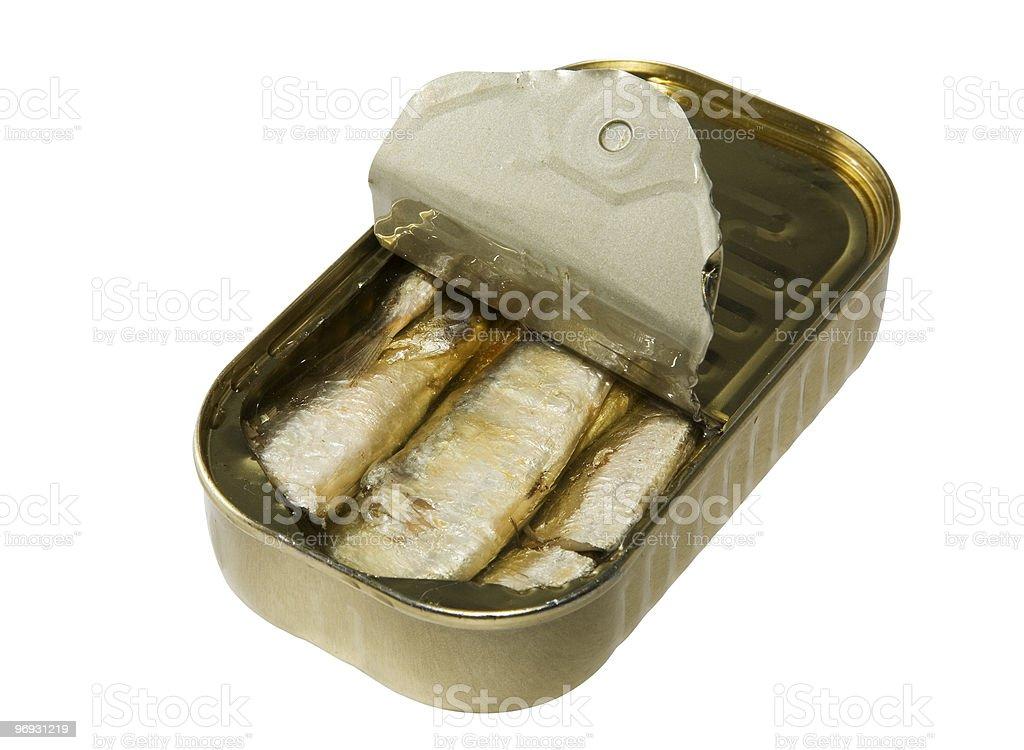 Tinned sardines royalty-free stock photo