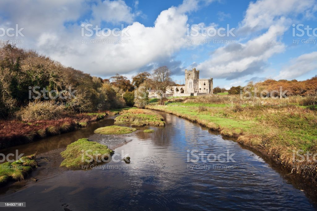 Tintern Abbey and River, County Wexford, Ireland stock photo