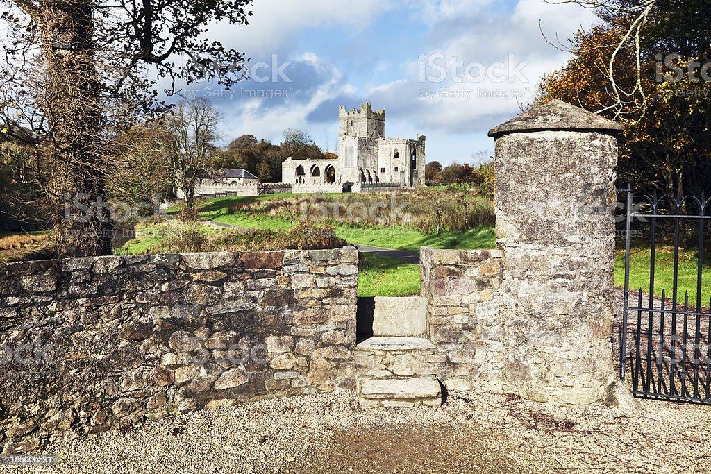 Tintern Abbey in County Wexford, Ireland stock photo