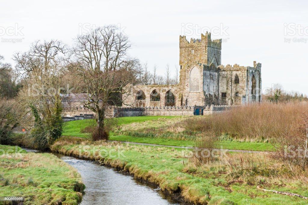 Tintern abbey in Ireland stock photo