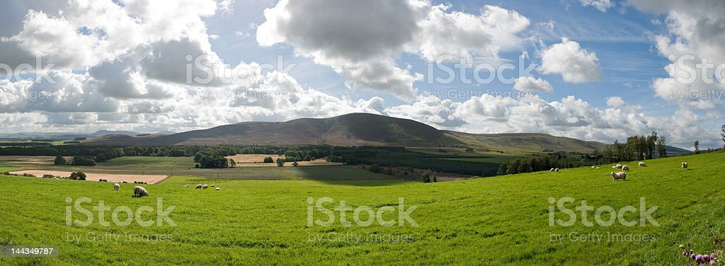 Tinto Landscape stock photo