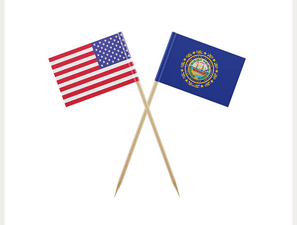 Tiny American and New Hampshire Flag on a Toothpick - foto de acervo