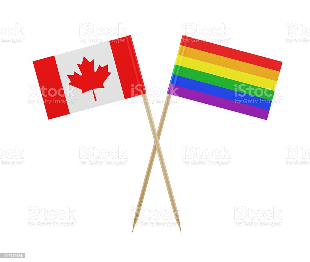 tiny flag of canada and lgbti on a toothpick stock photo 617579538