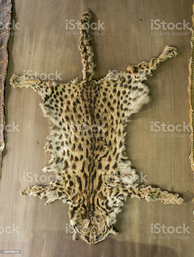 Tiny leopard tiger fur on the table for home decoration. stock photo