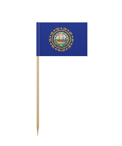 Tiny New Hampshire State Flag on a Toothpick - foto de acervo