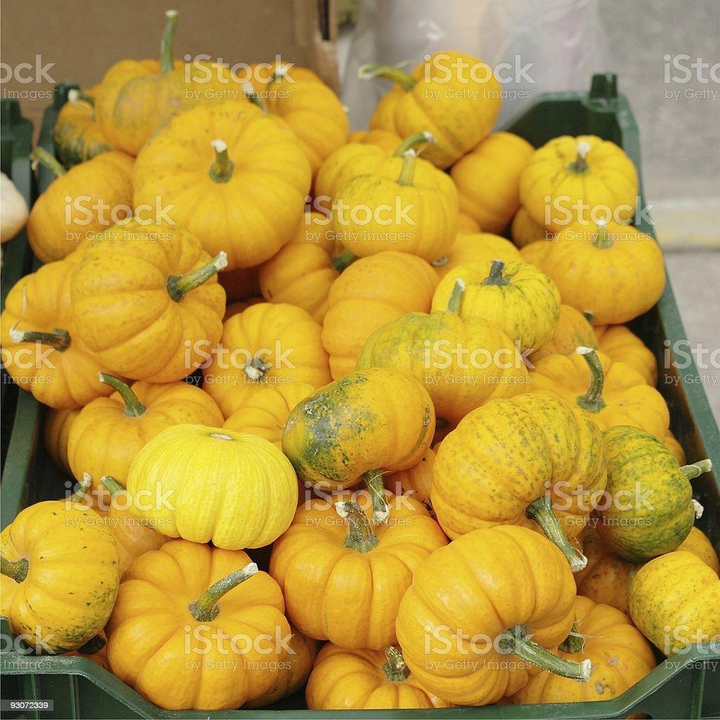 Tiny Pumpkins - Royalty-free Autumn Stock Photo