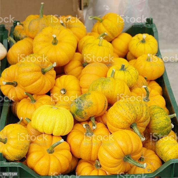Tiny Pumpkins Stock Photo - Download Image Now