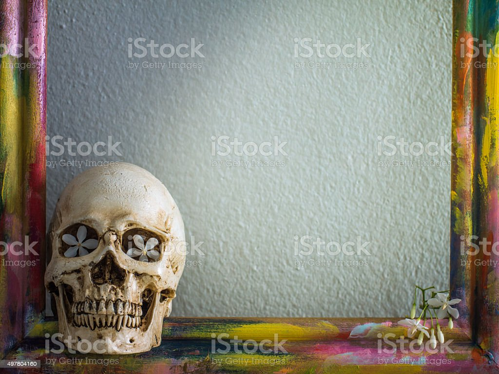 Tiny skulls with colorful wooden frame and flower stock photo