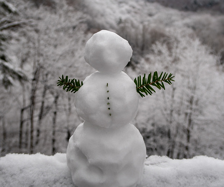 Tiny Snowman looking over valley