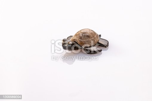 a small turtle made of two types of stone on a white background with reflection