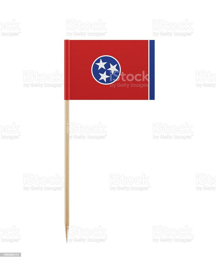 Tiny Tennessee Flag on a Toothpick - foto de acervo