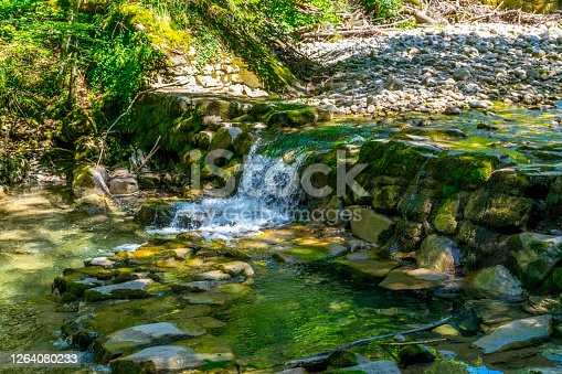 Tiny waterfall in a small stream with stone bed