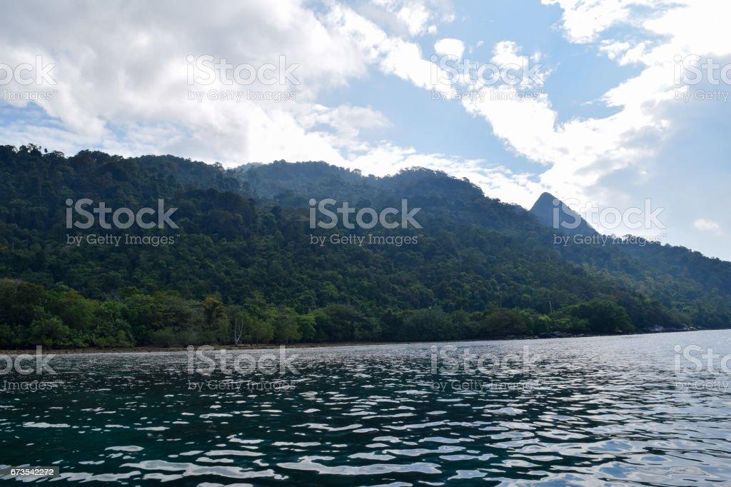 Tioman island beautiful wild nature. Landscapes and Flora of Malaysia royalty-free stock photo