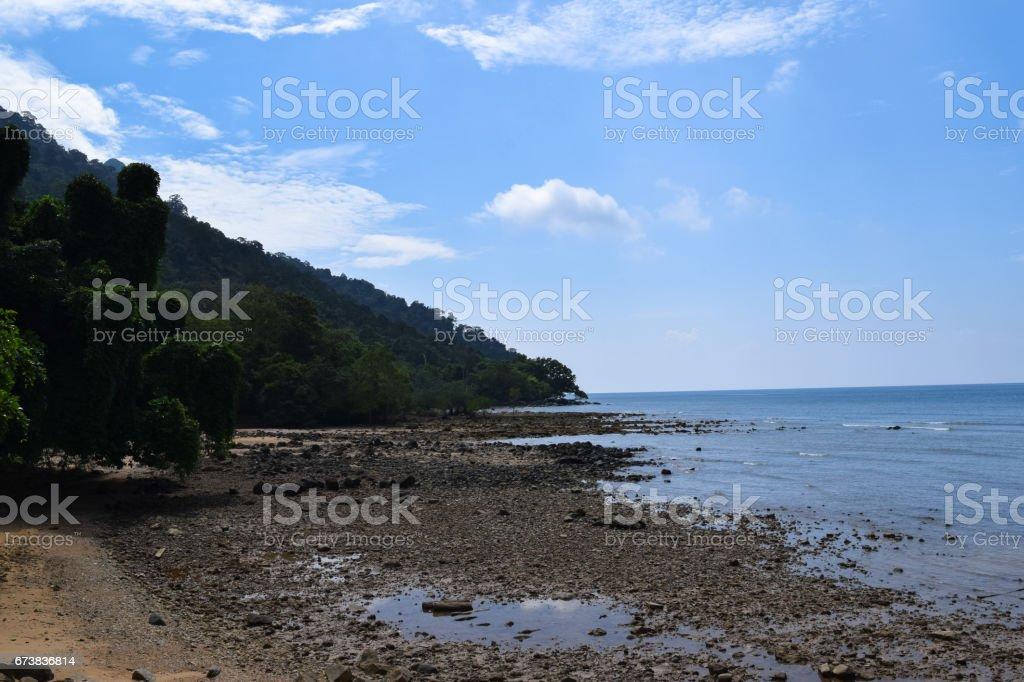 Tioman Adası güzel vahşi doğa. Manzara ve Malezya florası royalty-free stock photo