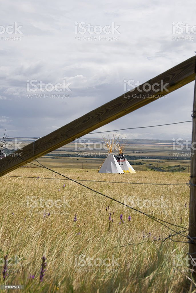 Tipis, Fence, and Wildflowers royalty-free stock photo