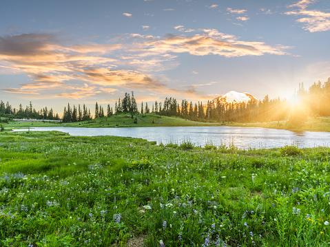 Tipsoo Lake of MT.Rainier