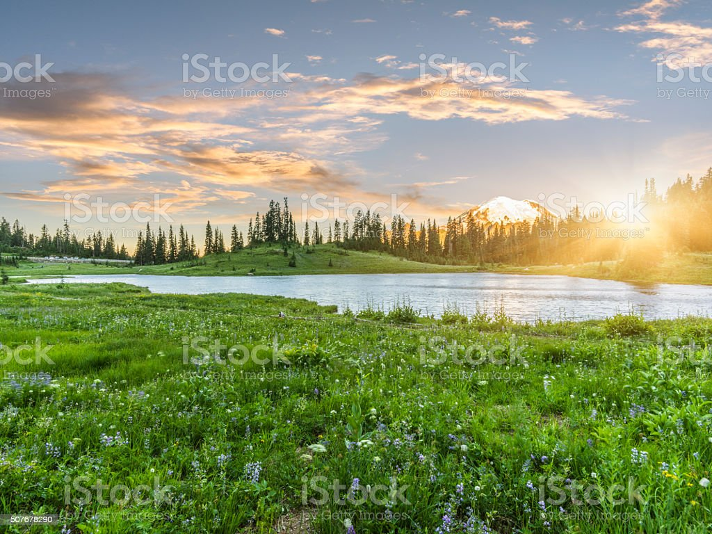 Tipsoo Lake of MT.Rainier stock photo
