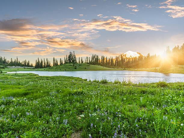 Tipsoo Lake of MT.Rainier MT.Rainier National Park, WA, USA. pierce county washington state stock pictures, royalty-free photos & images