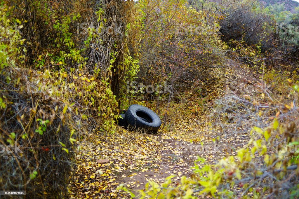 Tire Litter in Natural Beautiful Area stock photo
