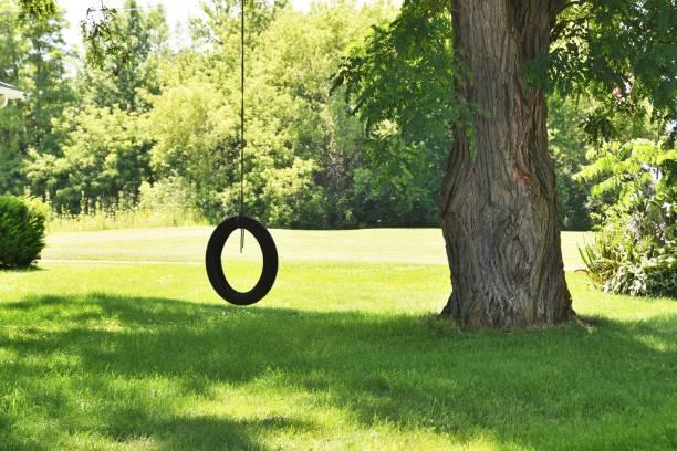 Reifenschwingen auf dem Schattenbaum – Foto