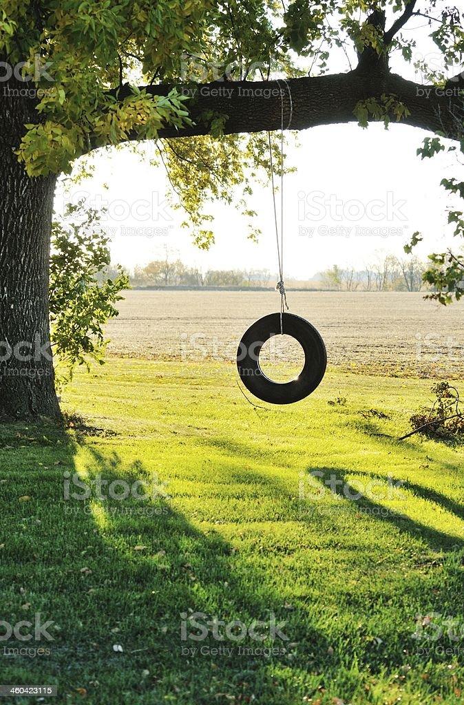 swinging tree tires