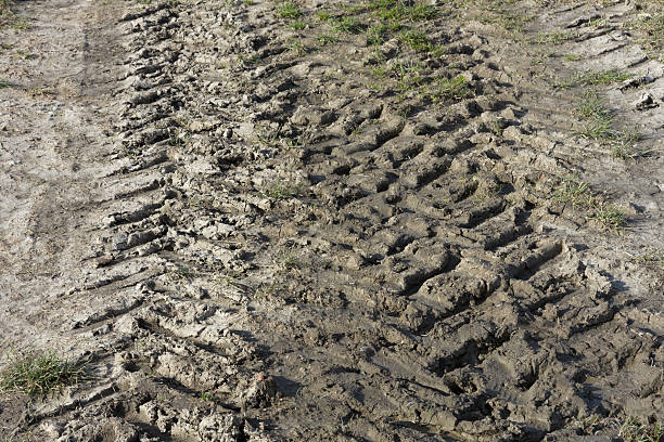 Tire track of a tractor stock photo