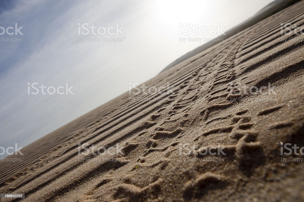 Tire Track On Sand royalty-free stock photo