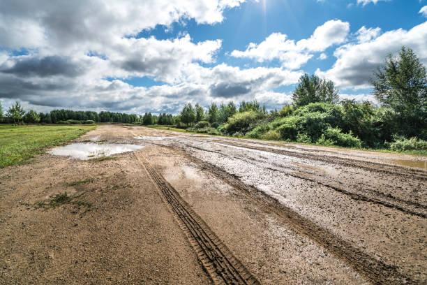 marca de pneu - estrada em terra batida - fotografias e filmes do acervo