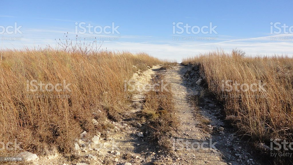 Tire tracks on a grassy hill stock photo