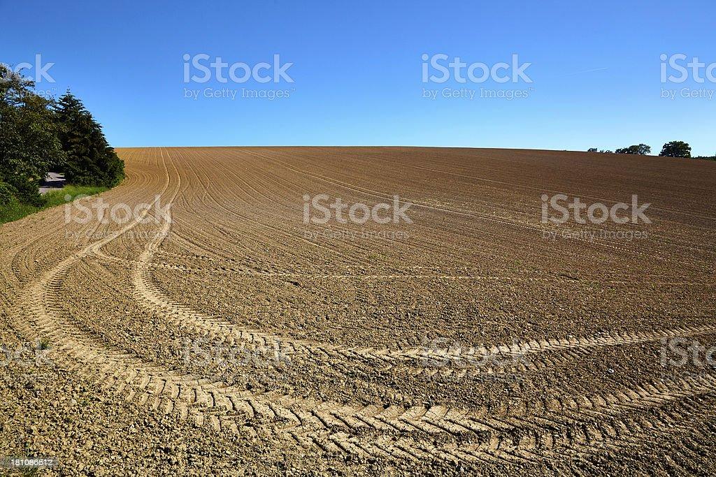 Tire tracks on a huge farm field stock photo