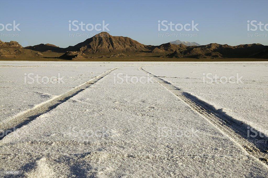 Tire Tracks on the Bonneville Salt Flats stock photo