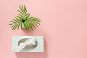 istock Tissue box and palm leaves on pink background 1096075756