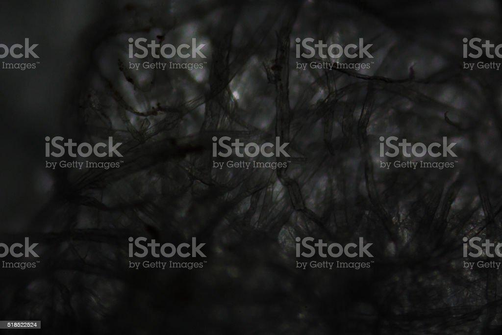Tissue paper fibers under the microscope stock photo