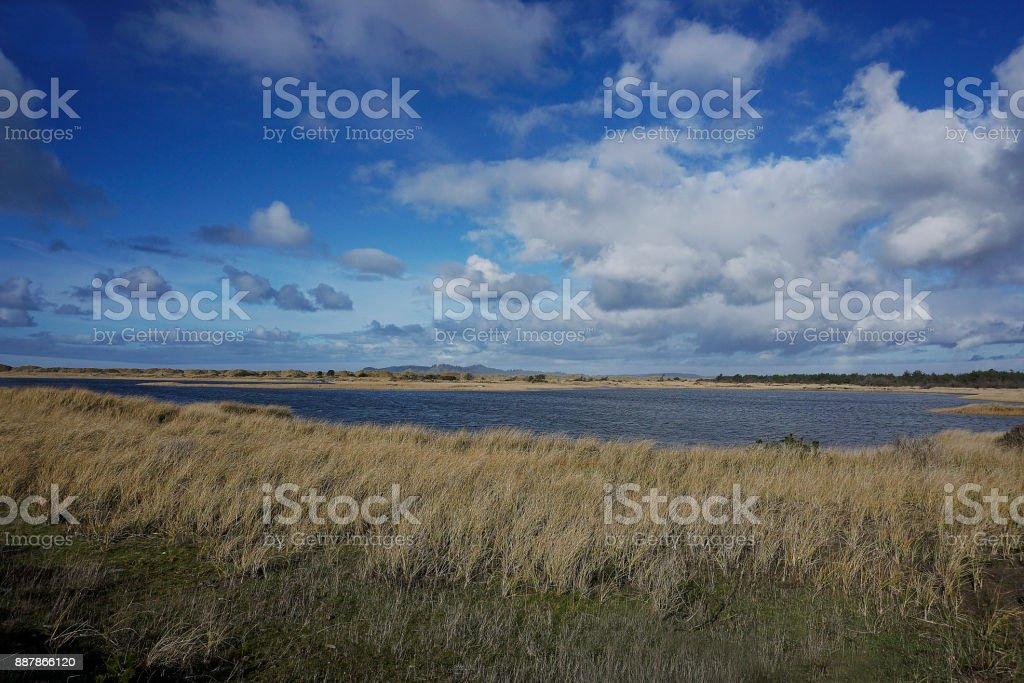 tital pond and beach grass stock photo