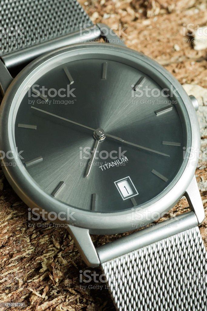 Titanium Watch on Tree Bark royalty-free stock photo