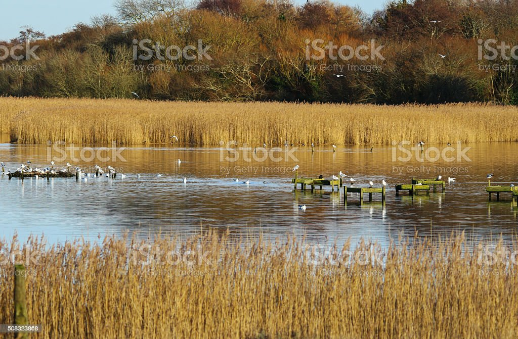Titchfield Haven stock photo