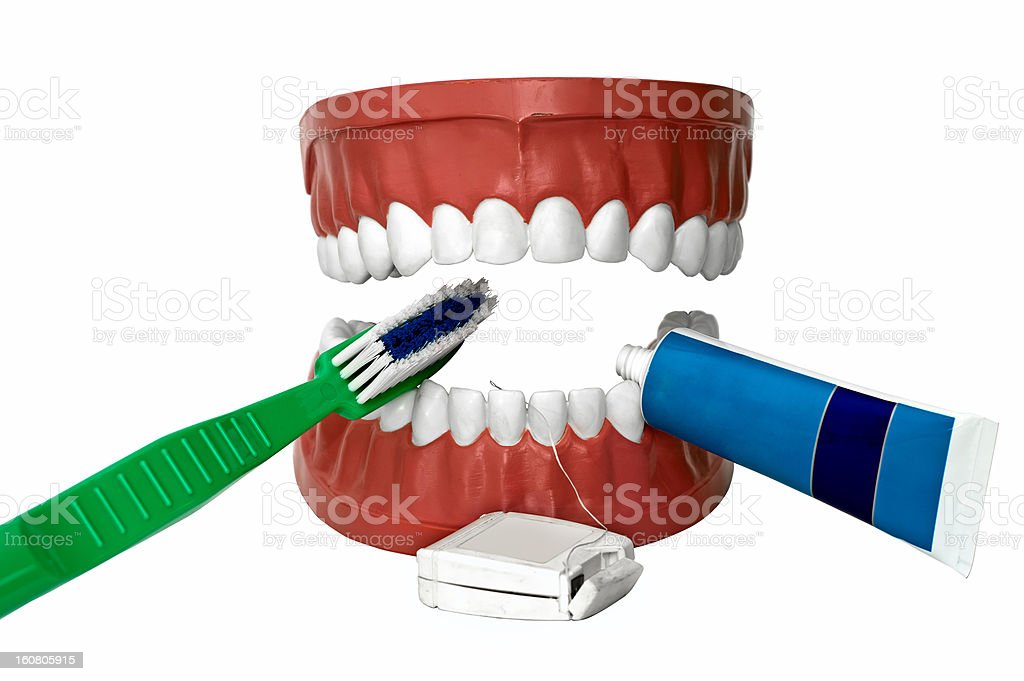 to brush one's teeth royalty-free stock photo