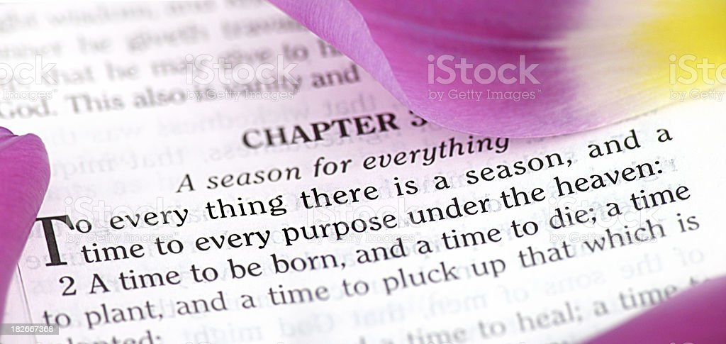 To Every Thing There Is a Season (KJV) stock photo