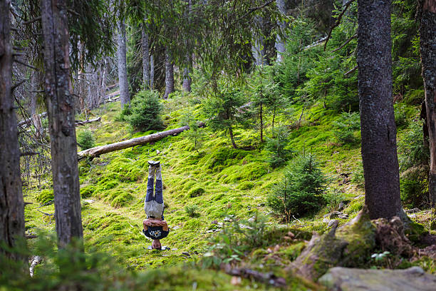 to stand on head in forest stock photo