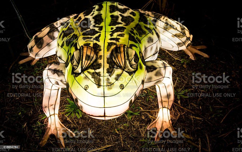 Toad lantern glowing in the dark stock photo
