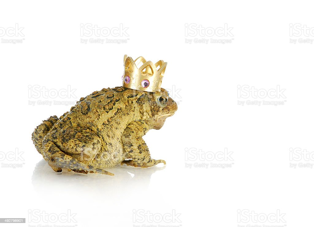 toad prince stock photo