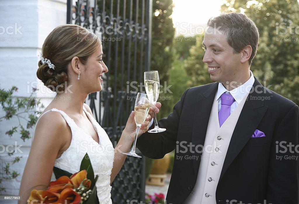 Toast for the Bride and Groom royalty-free stock photo