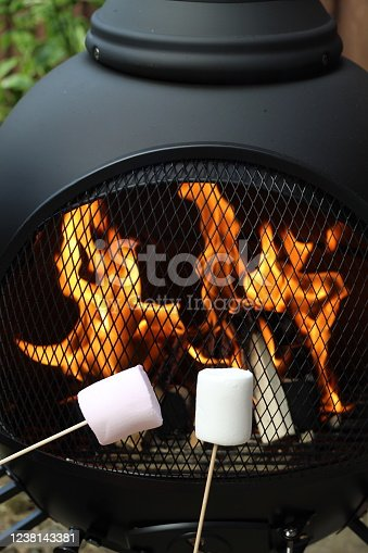 Using kebab sticks to toast the marshmallows on the fire pit. Great fun activity for the family. Focal point is on the marshmallow. Taken in May, Spring time in the UK.