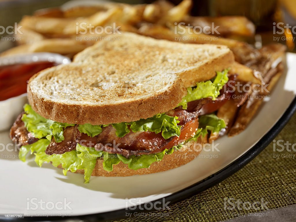 Toasted BLT Sandwich with Fries and Ketchup royalty-free stock photo