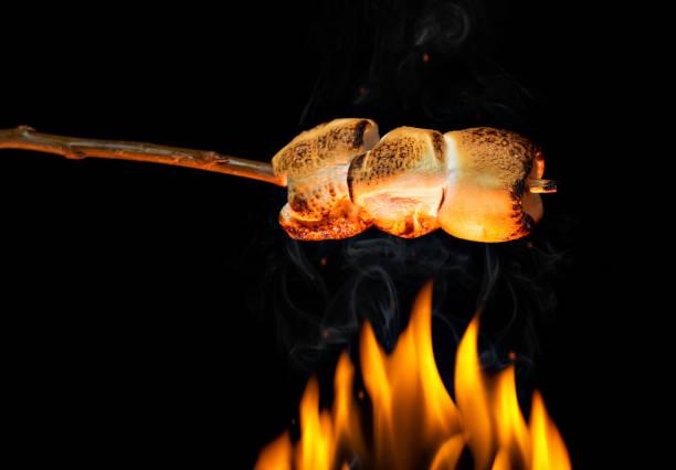 malvavisco tostado en palo de madera - foto de stock