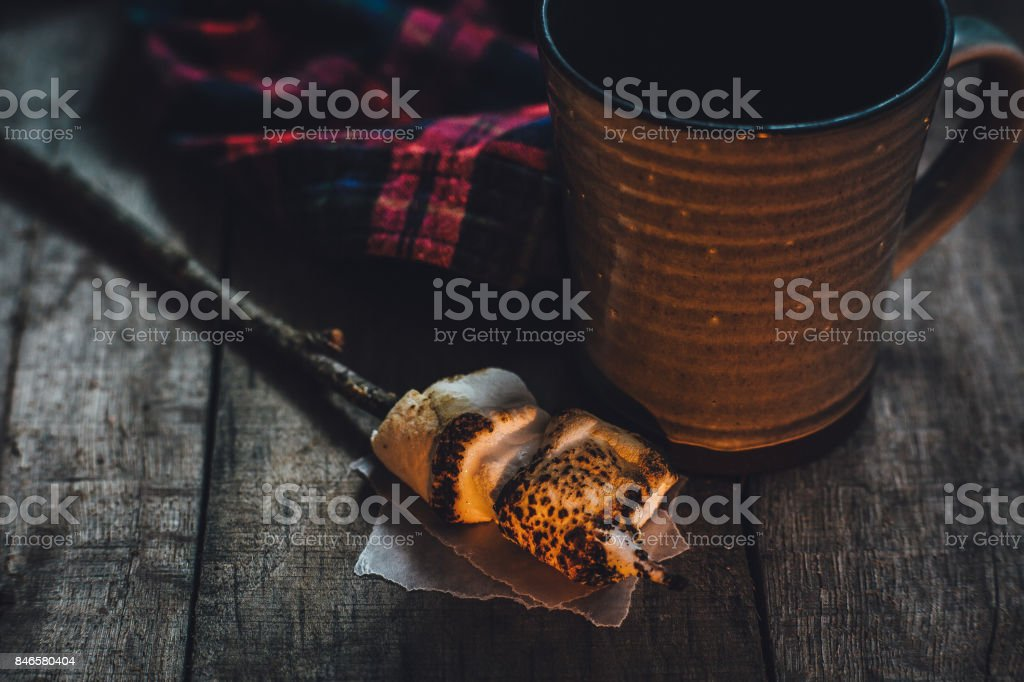 Toasted marshmallows by the fire stock photo