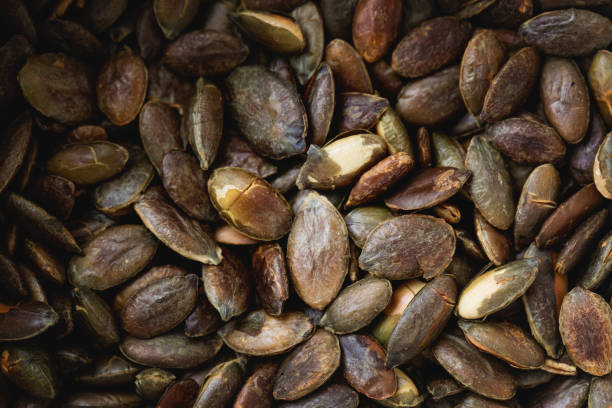 Toasted pumpkin seed  close-up stock photo
