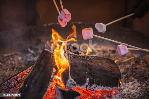 Selective focus, toasting a marshmallow over an open flame at Christmas market winter wonderland in London