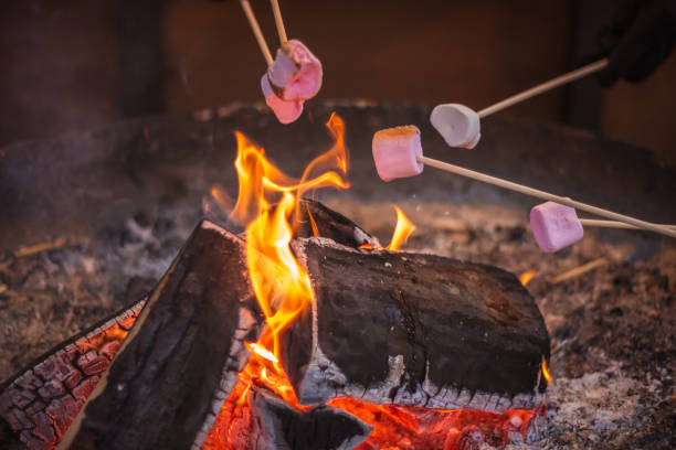 toasting a marshmallow over an open flame at christmas market winter wonderland in london - camping imagens e fotografias de stock