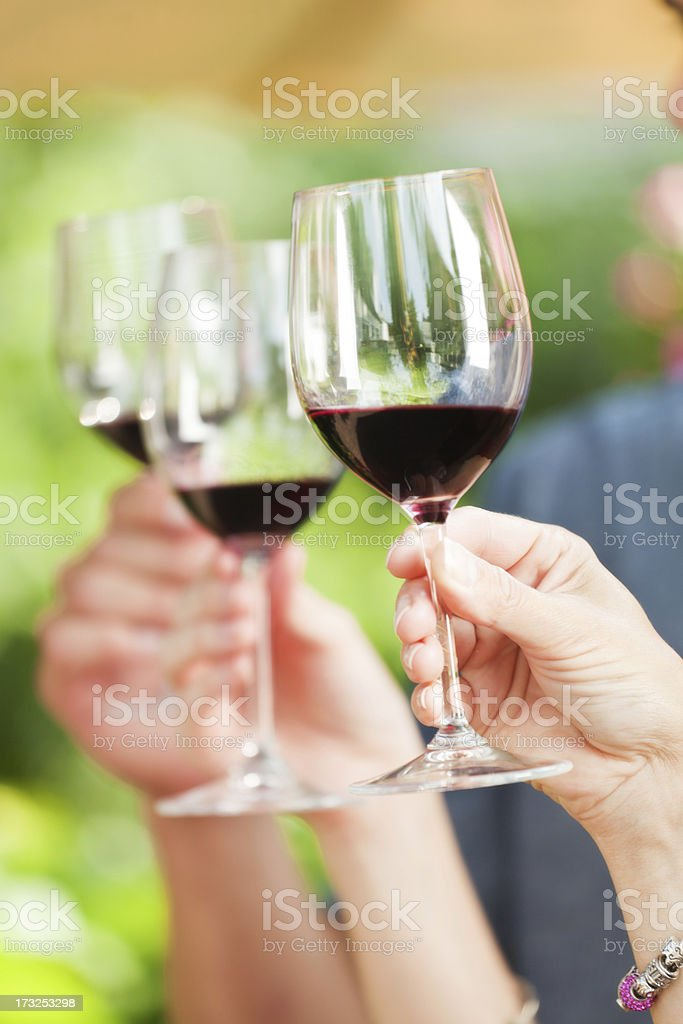 Toasting and Cheering with a Glass of Wine royalty-free stock photo